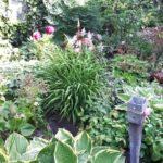 17.06.17 Off.Garten 088 BLOG